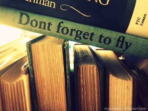 books,inspire,me,,book,life,fly,letter-500194fb5fc7478852a8e1809586d00a_h
