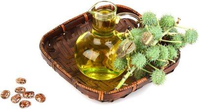 should-use-castor-oil-1