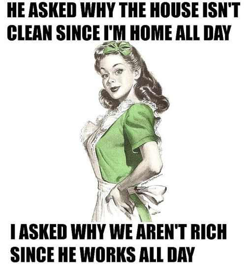 db9ac3836e0a8b5018ee92aab952509f--s-housewife-housewife-humor